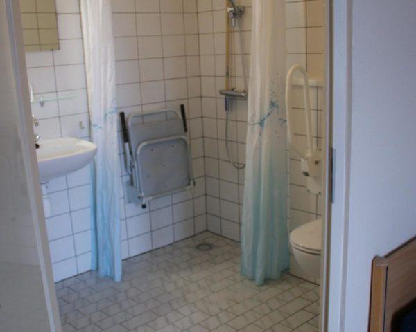 Luxe groepsaccommodatie in Elsloo - Friesland - Nederland - 30 personen - aangepaste badkamer